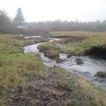 Walking Loch Creran