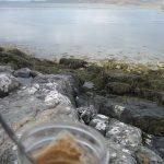 Waking Loch Creran