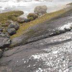 Sea smoothed rocks.
